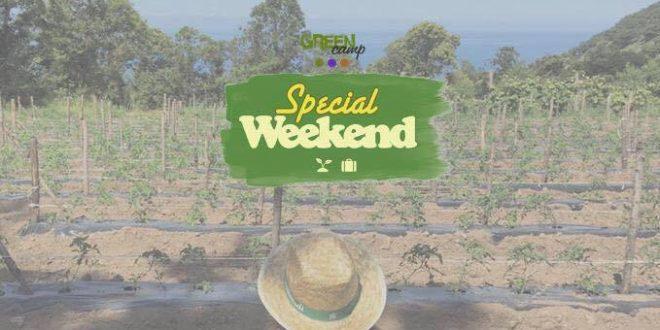 Arrivano gli Special Weekend di Green Hub. Soggiorni rurali in Calabria